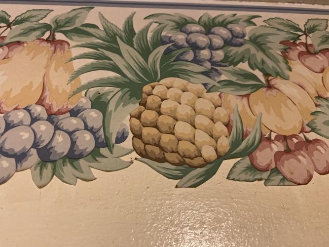 Ugly Pineapple Fruit Border