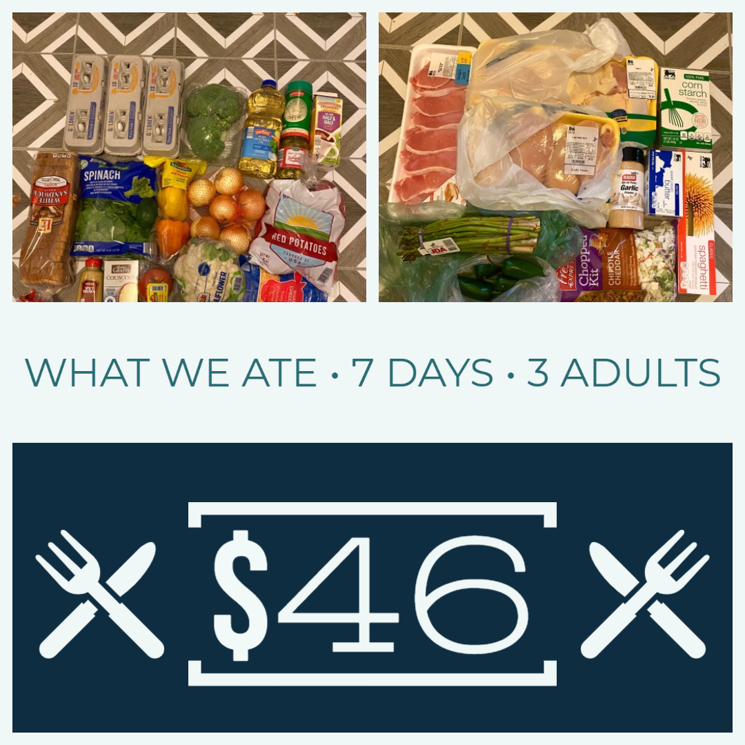 Read more about the article What Did We Eat This Week – How to Eat Well on a Budget • Week 2 of a full month!