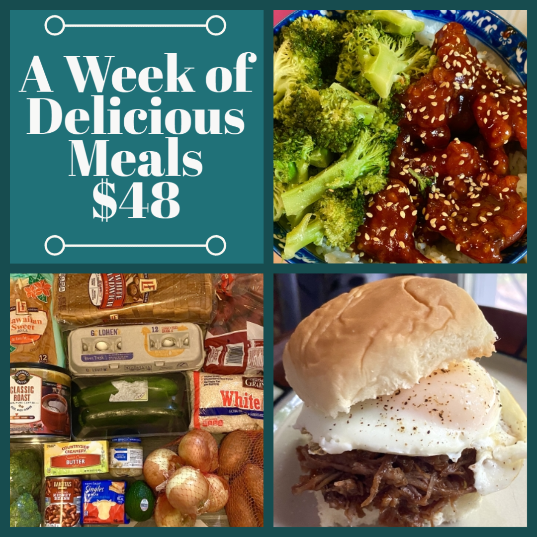 Read more about the article What Did We Eat This Week – How to Eat Well on a Budget • Week 4 of a full month!